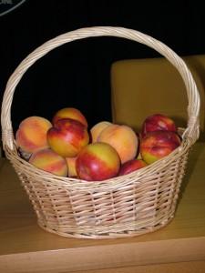 Ovocie sme vždy mali kvalitné...