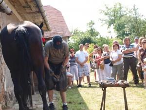 Takto podkúvali koňa v obci Baďan