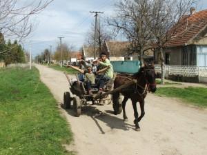 Koník s vozom a veselou čeliadkou v ňom