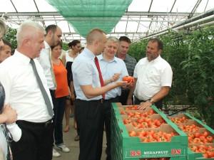 Pokrajinskú výpravu zaujímalo, ako sa realizuje investícia v hodnote 6,8 milióna din. do skleníka, ktorého novým majiteľom je AS Agroplod majiteľov Jarmily (riaditeľky) a Jána Bohušovcov