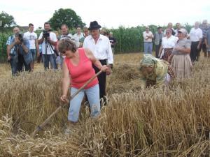 Ľudmila Belušová z Hubovej na Slovensku si spomenula na mladosť, keď ako dievka kosila trávu na seno