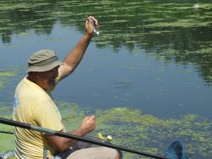 """""""Tu je!"""" potešil sa aj tejto rybičke lalitský rybár Ján Zorňan-Boky"""