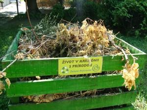 Zelení z Petrovca: jasný odkaz